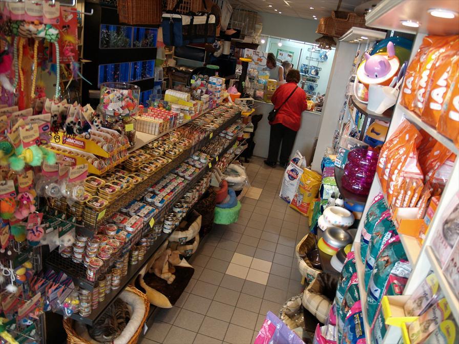 winkelen amsterdam dierenspeciaalzaak bello