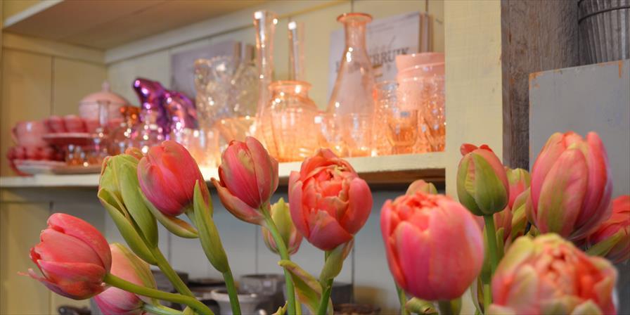 winkelen bergen op zoom rozen en bottels