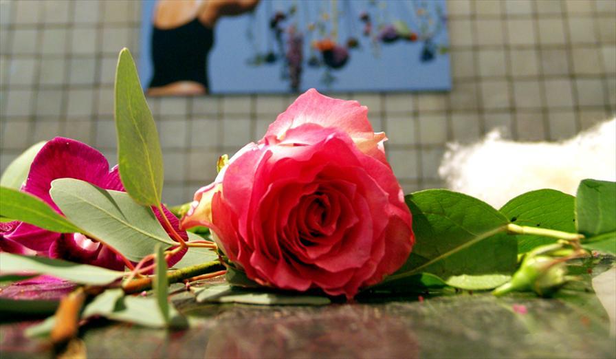winkelen breda v v bloemisten