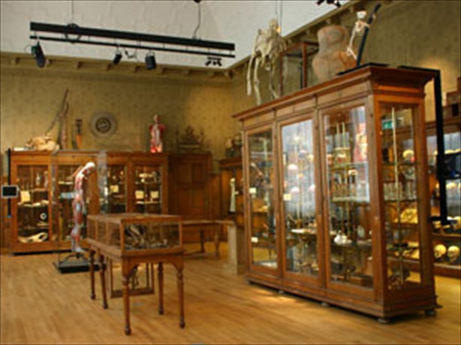 winkelen groningen universiteitsmuseum