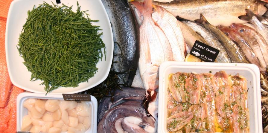 winkelen utrecht visjes